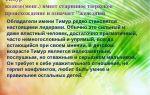 Что означает имя тимур – характеристика имени тимур, толкование имени тимур