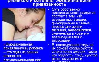 Эмоциональная привязанность ребенка