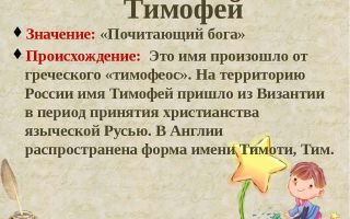 Что означает имя тимофей – характеристика имени тимофей, толкование имени тимофей