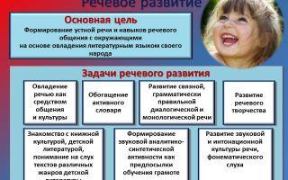 Как дети овладевают языком или развитие языковых навыков