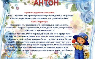 Что означает имя антон – характеристика имени антон, толкование имени антон