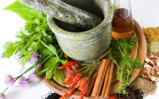 Импотенция – народная медицина, народные средства