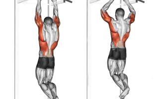Подтягивание на турнике — ключ к объемным мышцам спины