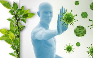 Самогипноз для крепкой и здоровой иммунной системы