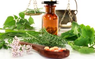 Заболевания кишечника – народные средства и рецепты / народная медицина