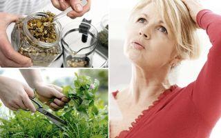 Климакс у женщин лечение народными средствами и методами/ народная медицина
