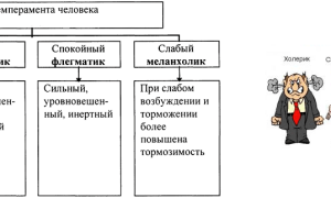 Типы темперамента человека