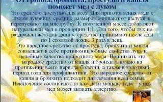Бронхит лечение народными средствами  / народная медицина / народные рецепты