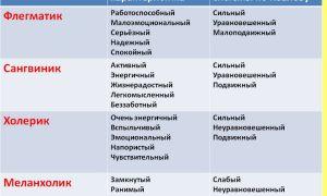 Холерик: характеристика темперамента