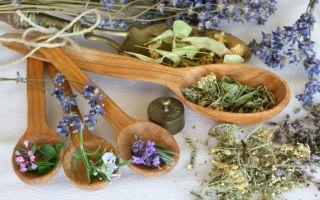 Народная медицина —  рецепты и травы для здоровья