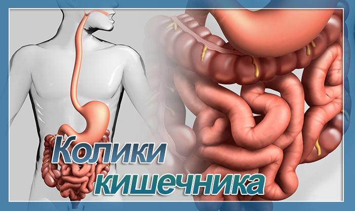 Тяжесть в желудке народные средства лечения